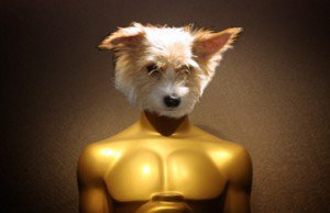 Charlie Awards: Upcoming Film