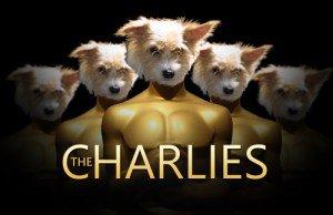 Charlie Awards 2014 – Best Public Appearance